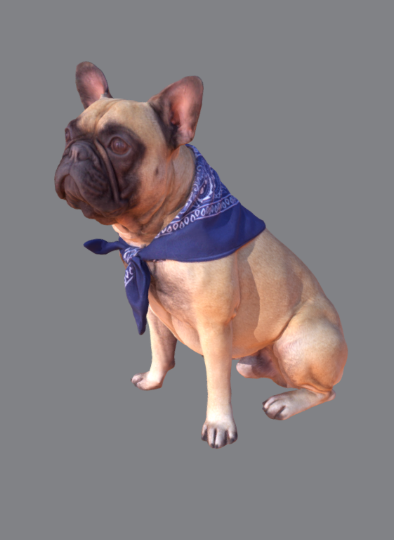 Captura.PNG Download free STL file French Bulldog • 3D printable model, Hardesigner