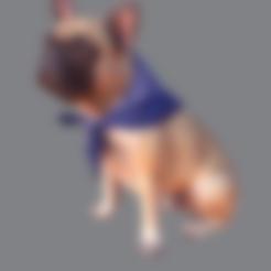 frances.stl Download free STL file French Bulldog • 3D printable model, Hardesigner