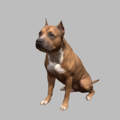Captura.PNG Download free STL file Pitbull • 3D printing template, Hardesigner