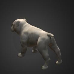 Descargar archivos 3D gratis Bulldog, Hardesigner