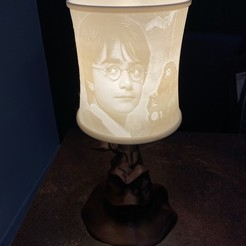 IMG_6420.jpg Download free STL file Harry Potter lampshade • 3D printable model, lalie_d