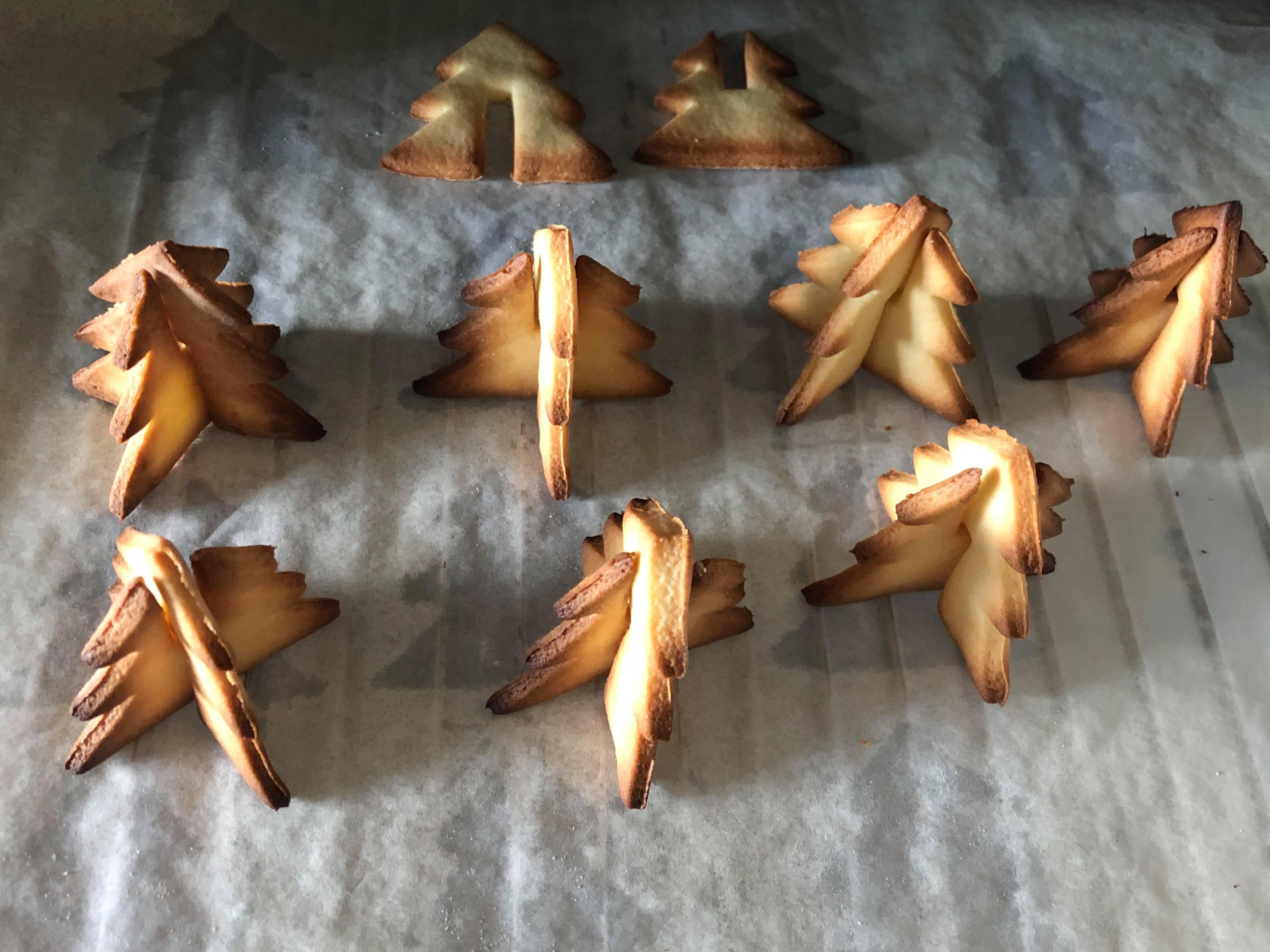 sapin cuit.png Télécharger fichier STL gratuit emporte piece sapin 3D  cookie cutter fir 3D • Objet pour imprimante 3D, fantibus14