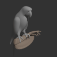 Parrot2.png Download free STL file Parrot • 3D printing template, osayomipeters