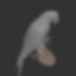 parrot-Parrot.stl Download free STL file Parrot • 3D printing template, osayomipeters