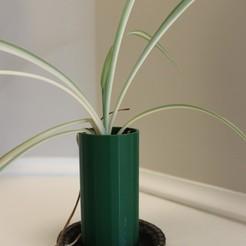 Télécharger fichier STL Plante araignée empilable en pot, evmccrea