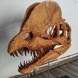 Download STL files Dilophosaurus Skull, arric
