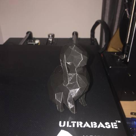 Modelos 3D Conejo Poliéster Bajo, Xon