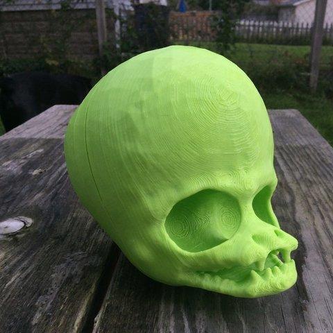Free 3D printer files Alien Skull, idig3d