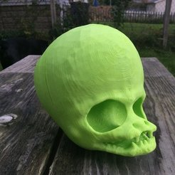 7e6de99f64c41ac34539f00f391a46f2_display_large.JPG Download free STL file Alien Skull • Model to 3D print, idig3d