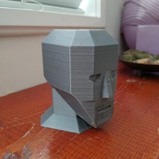 Download free STL file Low Polygon Head • Model to 3D print, cristcost