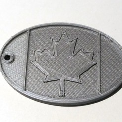 Download free STL file luggage tag Canada • 3D print model, cristcost