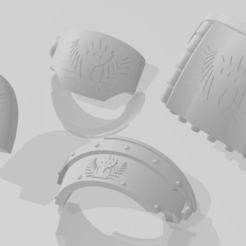 2020-01-12_10_45_30-Window.png Download free STL file Drinkers of the Soul Shoulder Pads for Armored Troops • 3D printer model, Haarspalta