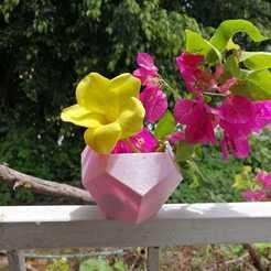 WhatsApp Image 2020-08-28 at 1.02.23 PM (1).jpeg Download free STL file Dodecahedron pot • 3D printing design, Canek