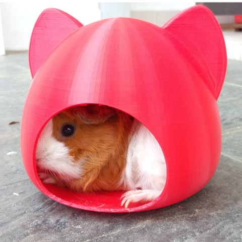3D printer models Pet House, Cat, Hamster, Guinea Pigs, small pet, hopio