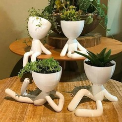 Download free STL file Pots Plants Cups x4, shacomieron9