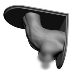 Download 3D printer files Shelf Brackets Female Torso Nipple Pierced, print3dstv