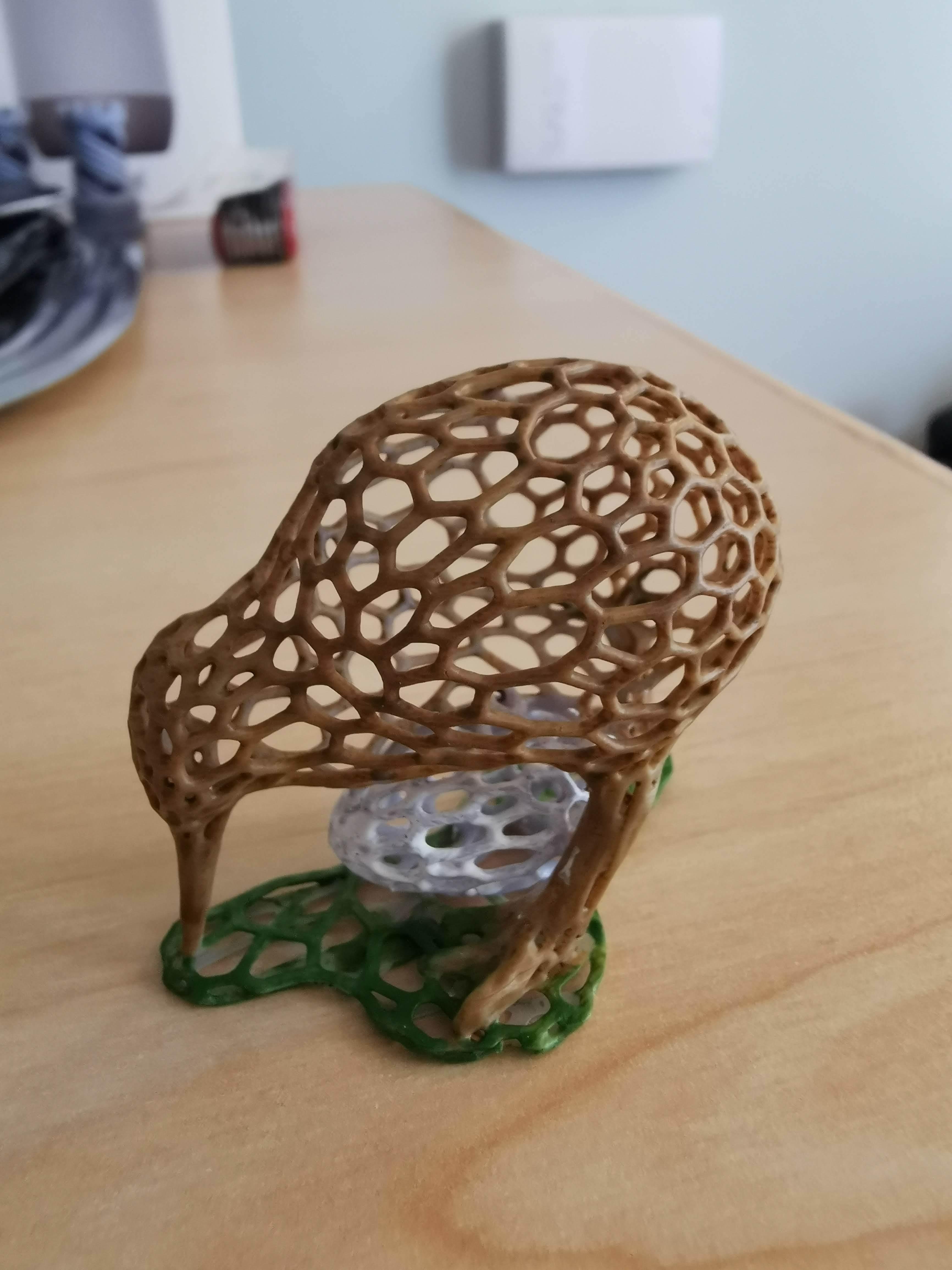 IMG_20191114_133008.jpg Download free STL file Kiwi • Model to 3D print, Oggie