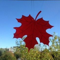 Télécharger modèle 3D gratuit Feuille d'érable, Odrenria