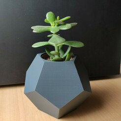 DodecaethronBackground.jpg Download STL file Dodecahedron Ikea cactus pot • 3D printing template, AlexEarp