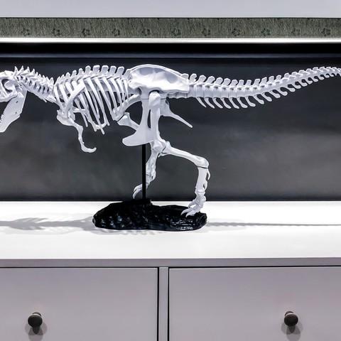 Descargar modelo 3D gratis Esqueleto de T-Rex, bestoked