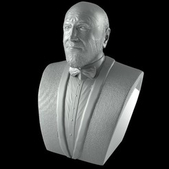 untitled.155.jpg Download free STL file Marcos Mundstock Bust Tribute - Le Luthiers • 3D printer object, lucasurielabate