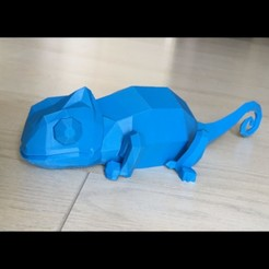 Cham_01.jpg Download free STL file Chameleon low poly • 3D printing model, Salomea
