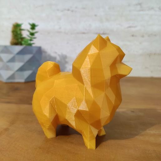 Download 3D printing models Dog German Spitz / Pomerian Lulu (EASY PRINT NO SUPPORT), happens
