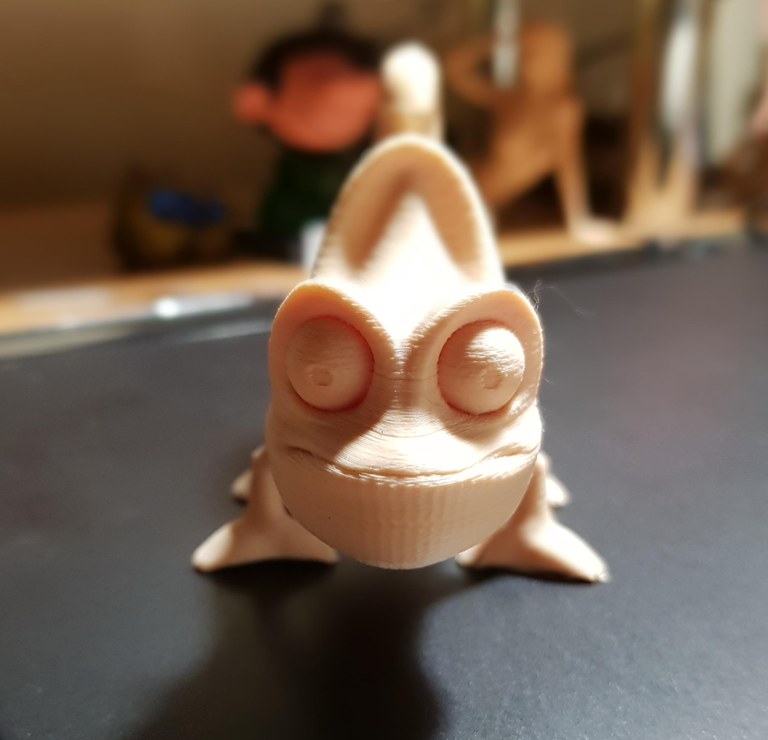 20190909_1937022.jpg Download free OBJ file Chameleon • 3D printable design, screw