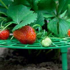 Télécharger fichier imprimante 3D gratuit soutien à la fraise, realjobber