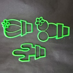 Descargar diseños 3D gratis cortante cactus pack/kit/set cookie cutter, Surfer_Calavera