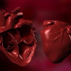 Télécharger fichier imprimante 3D Coeur anatomique en coupe, prototypes_and_pixie_dust