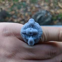 Télécharger fichier impression 3D anneau crâne et serpent, trajan1990