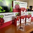 Download free STL files Raspberry Pi Display Case, marigu