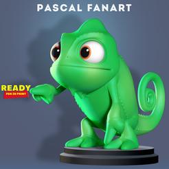 Pascal_3d.jpg Télécharger fichier STL Pascal Fanart • Modèle pour impression 3D, nlsinh