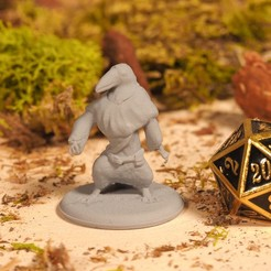 Download free 3D printing files Kenku - Tabletop Miniature, M3DM