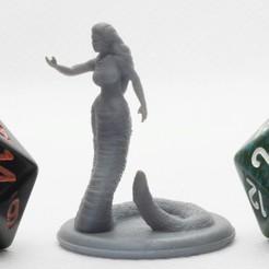 P4260071.jpg Télécharger fichier STL gratuit Yuan-Ti (cheveux de serpent) Miniature de table • Plan pour imprimante 3D, M3DM
