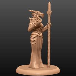 Imprimir en 3D gratis Dragonborn Enchantress - Miniatura de mesa, M3DM
