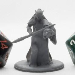 Descargar Modelos 3D para imprimir gratis Paladín de sangre de elfo - Miniatura de mesa, M3DM