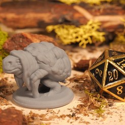 Download free 3D printing templates Tortle - Tabletop Miniature, M3DM