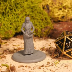 Download free 3D printing designs Half Elf Bard - Tabletop Miniature, M3DM