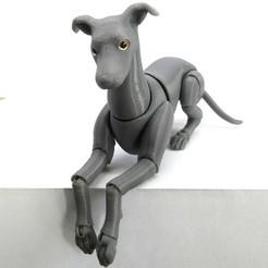 Download STL file Greyhound BJD • Design to 3D print, leykinaea