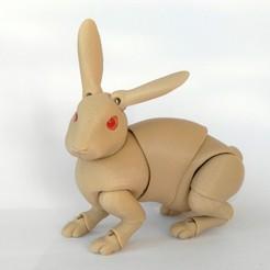 Download STL file Rabbit BJD • 3D printer object, leykinaea