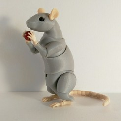 Download STL file Rat BJD • 3D print object, leykinaea