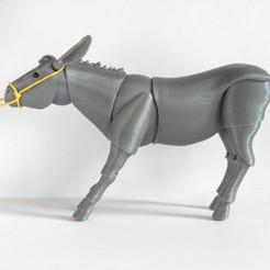 IMG_20201013_130609.jpg Download STL file Donkey BJD • 3D printable object, leykinaea