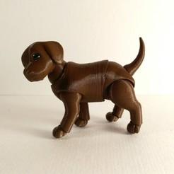 Download STL file Puppy BJD • 3D printing model, leykinaea
