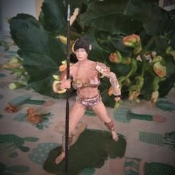 Download 3MF file Attractive Warrior Elf • 3D printing template, javherre