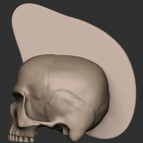 02.png Download free OBJ file Punk skull • 3D printer model, CarlCreates