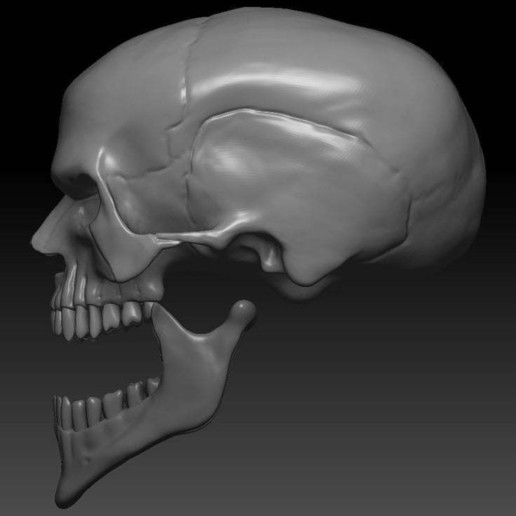 9a11768d2c2eea7c331011b06a7d4eb2_display_large.jpg Download free OBJ file Evil Skull 3D Print Concept • 3D printer template, CarlCreates