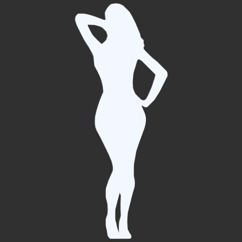 17.png Télécharger fichier STL Pack Silhouette Sexy • Objet imprimable en 3D, CarlCreates