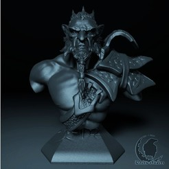 14.jpg Download STL file PHANTOM LANCER BUST DOTA 2 • Model to 3D print, raven-studios